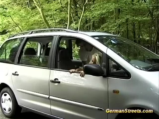 picked up busty german for backseat anal