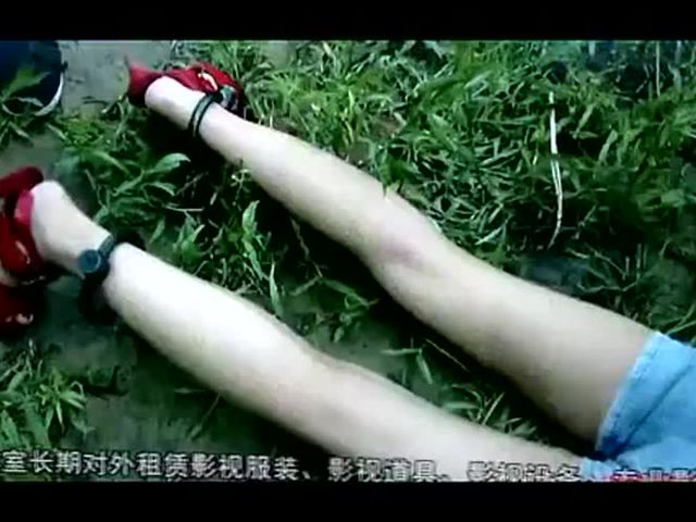 Chinese government hates hooker whore, eliminate!