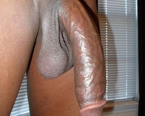 Big cock pic only